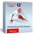 Oracle 12c e as opções disponíveis